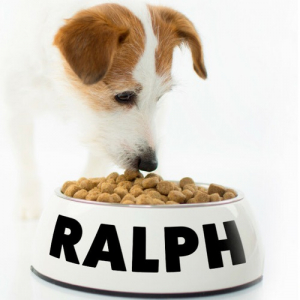 personalised name sticker for dogs